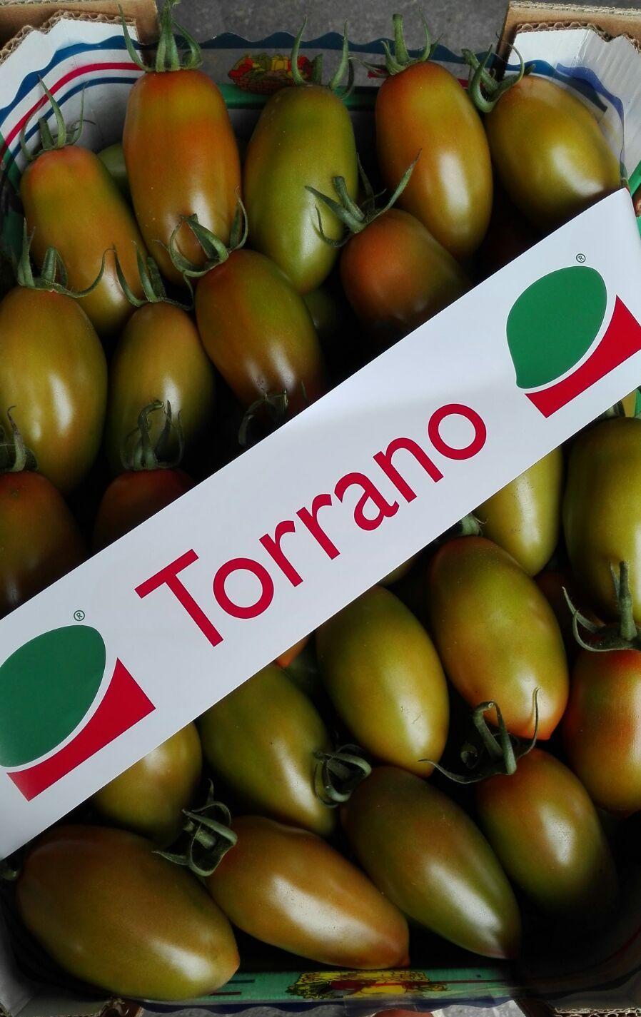 TORRANO F1- frutto invaiato