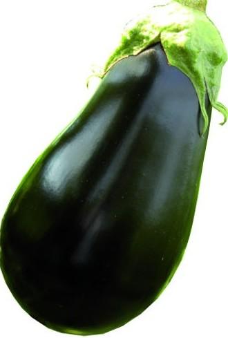 samba f1 eggplant oval linea professionale