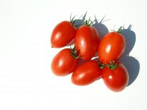 mini plums